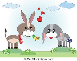 ânes, amour, deux