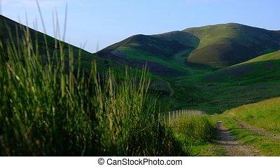 écossais, piste, rural, frontières