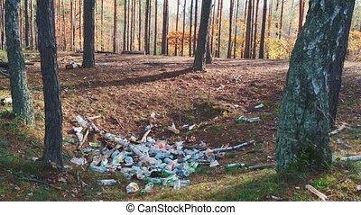 écosystème, polluer, forêts, déchets, détruire