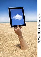 écran, main, informatique, tenue, toucher, plage
