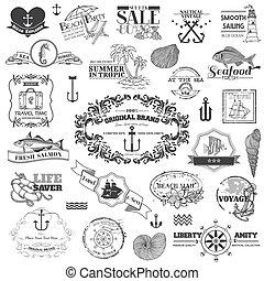 éléments, -, calligraphic, vecteur, conception, mer, nautique, album