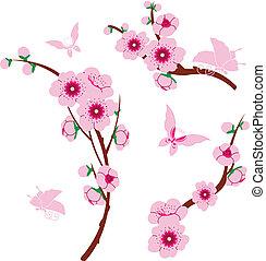 éléments, sakura