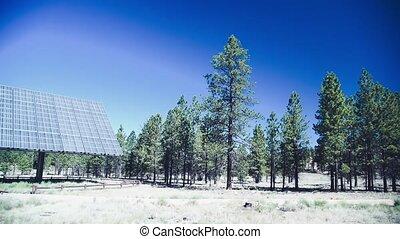 énergie, concept, mouvement, lent, solaire, forêt, propre, panneaux