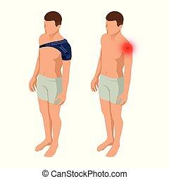 épaule, corps, isométrique, ou, douleur, entorses, après, illustration, anatomique, vecteur, joint., medicine., orthopédie, rééducation, man., trauma.