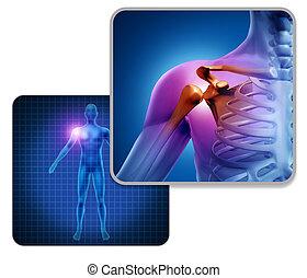 épaule, douleur, jointure humaine