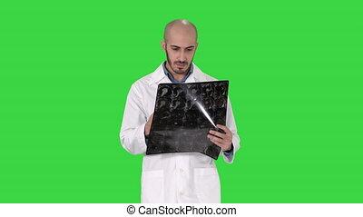 épaule, marche, docteur, balayage, chroma, écran, quoique, vert, réexaminer, rayon x, key.