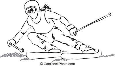 équipement, femme, illustrati, ski