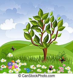 été, arbre, jeune, paysage