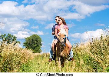 été, cheval, couple, pré, équitation