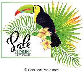 été, feuilles, vente, toucan, fleurs, composition