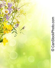 été, fond, fleurs