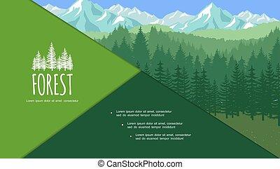 été, forêt, coloré, composition