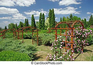 été, jardin