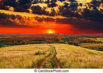 été, nature, arbre, champ ciel, paysage, rural, vert, levers de soleil, sentier, coucher soleil, herbe, route