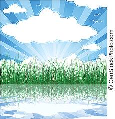 été, nuages, ensoleillé, herbe, fond, eau