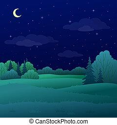 été, paysage, forêt, nuit