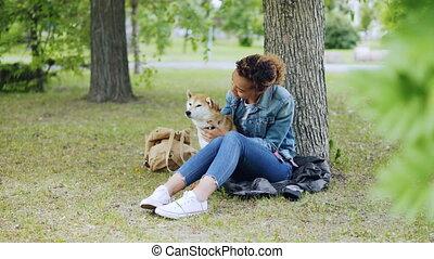 été, pelouse, autour de, elle, séance, parc, il, arbres, chien, day., conversation, venteux, purebred, vert, séduisant, africaine, propriétaire, américain, girl, caresser, heureux
