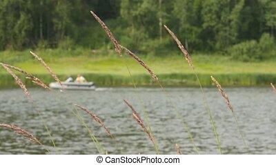 été, rapidement, time., en mouvement, peche, petit, rivière, hors-bord, 4k