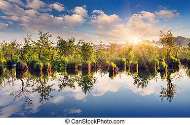 été, rivière, coloré, matin