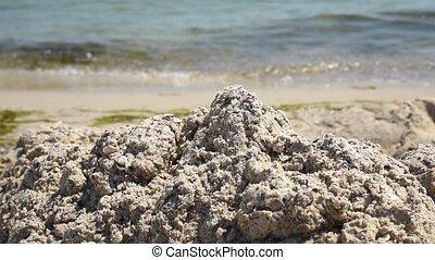 été, sable, rivage, mer noire, tas, jour