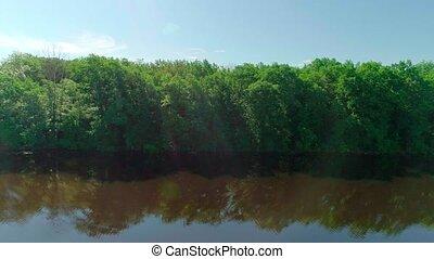 étang, été, vert, vidéo, lac, ou, aérien, forêt, coucher soleil