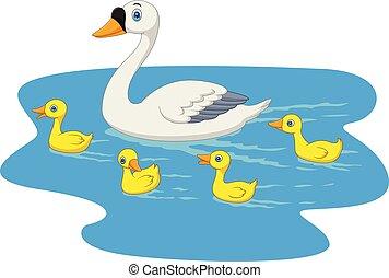 étang, cygne, dessin animé, natation famille