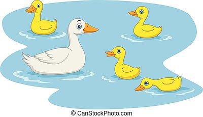 étang, natation, dessin animé, famille, canard