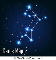 """"""", étoile, sky., canis, illustration, major"""", vecteur, nuit, constellation"""