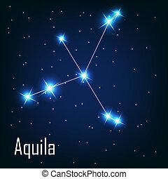 """étoile, sky., nuit, illustration, vecteur, """"aquila"""", constellation"""