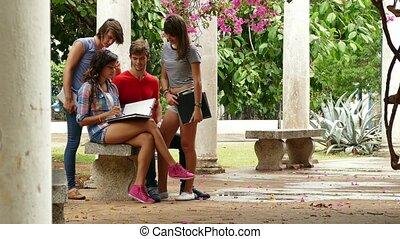 étudiants, étudier, conversation, collège, amusement, 4-group, avoir