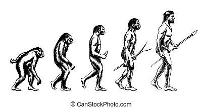 évolution, humain, illustration