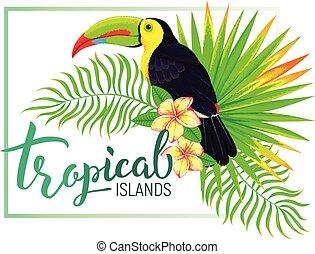 île, feuilles, exotique, toucan, fleurs, composition