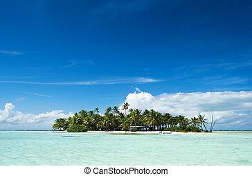 île, inhabité, pacifique