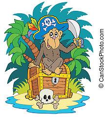île, pirate, singe