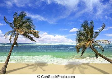île, plage, hawaï, pardise