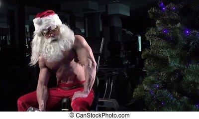 002, biceps, santa, gymnase, formation