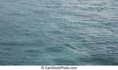 1, fond, océan