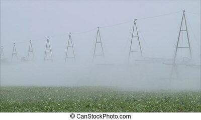 1, irrigation