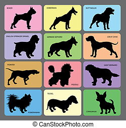 1, silhouettes, chien