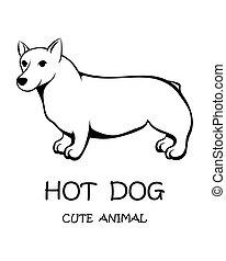 10., eps, court, vecteur, mignon, chien, long