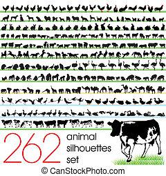 262, silhouettes, ensemble, animal