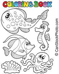 3, coloration, animaux, livre, mer