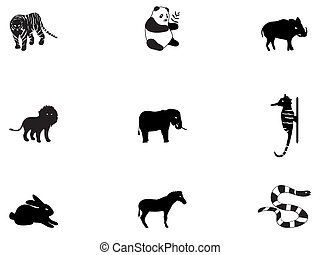 3, icônes animales