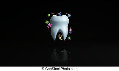 3d animation, -, bactérie, dent