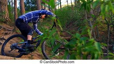 4k, bicyclette voyageant, homme, forêt