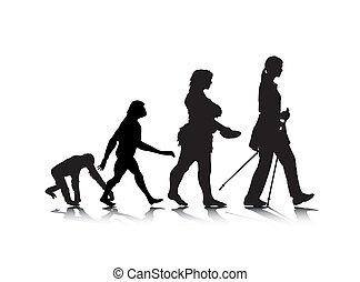 8, évolution, humain