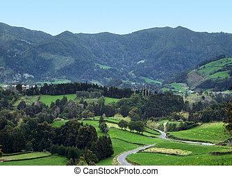 açores, vue panoramique, vallonné