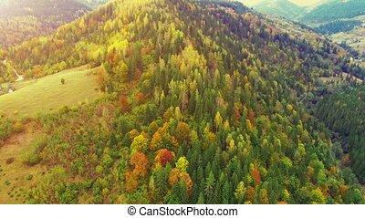 aérien, 30fps, vol, montagnes., carpathian