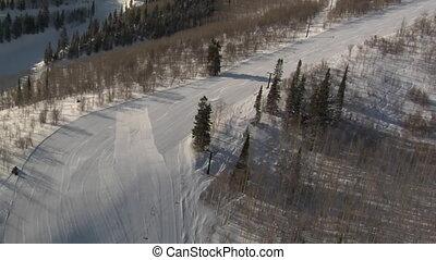 aérien, skieur, coup, snowboarder, forêt