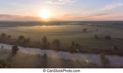 aérien, sur, champ, brouillard, aube, vue
